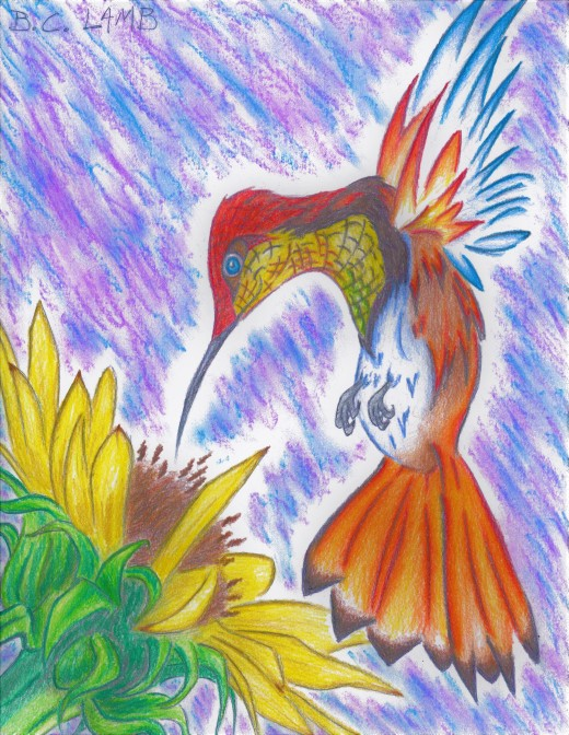 Pheonix Fire Hummingbird
